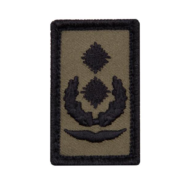 Oberstleutnant Luftwaffe Mini Dienstgradabzeichen Patch