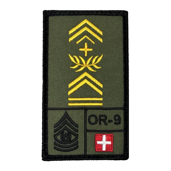 Vizeleutnant Schweiz Rank Patch